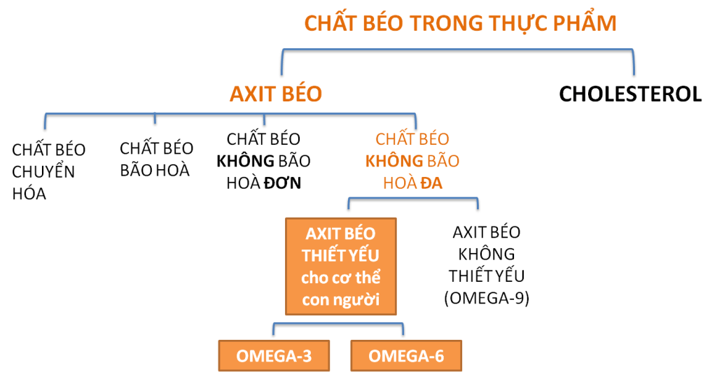 Axit beo thiet yeu Omega